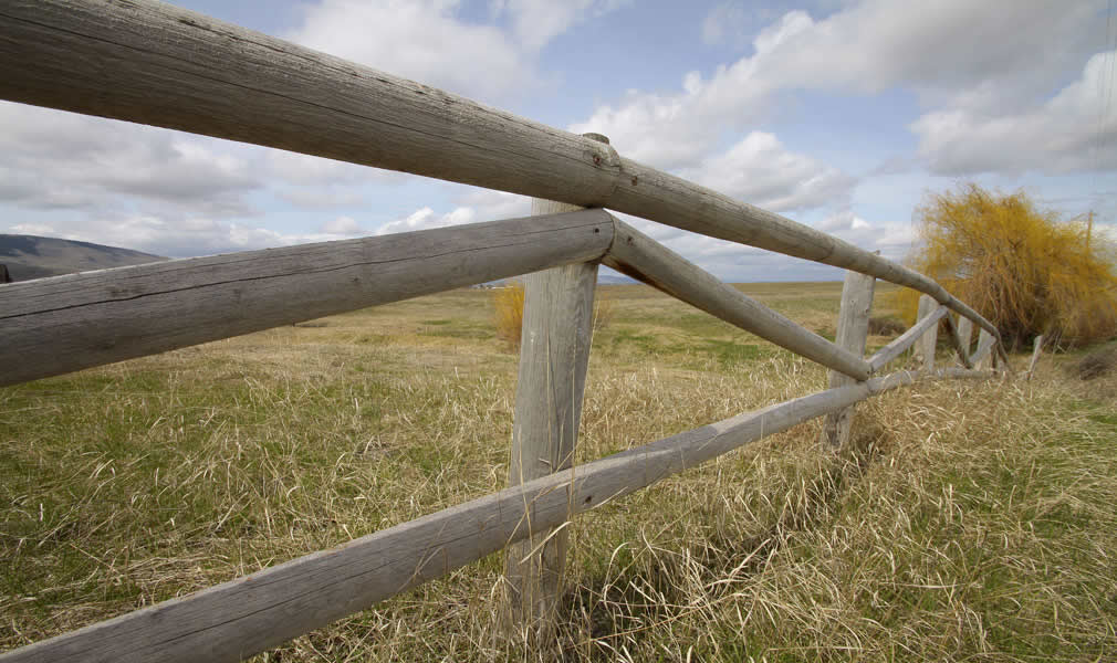 Wood Fencing Split Rails Pointed Amp Capped Wood Posts