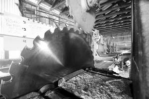Hunts Timbers Rough Cut Lumber Mt Sawmill Mill Rough